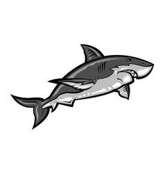 Shark cartoon vector