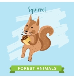 Squirrel forest animals vector image