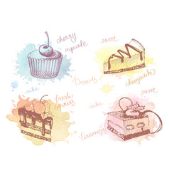 Colored sketches of cupcakes berry pie and cake vector