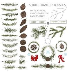 Spruce branches brushes set with pine cones and vector