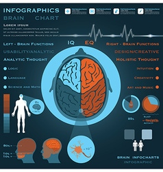 Brain infographic infocharts health and medical vector