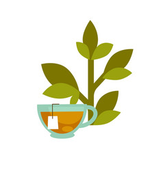 Green leaf and a tea cup vector