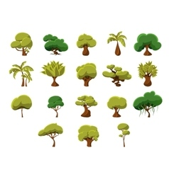 Tropical trees collection vector