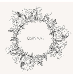 Grape vine sketch frame round vector