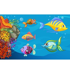 A school of fish under the sea vector