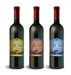 Set of wine bottle with label wine and grapes vector
