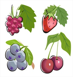 different berry icon set in cartoon ctyle vector image vector image