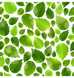 Fresh green leaves seamless background pattern vector image vector image