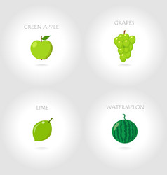 green apple grapes lime watermelo vector image vector image