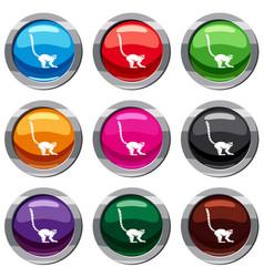 lemur monkey set 9 collection vector image