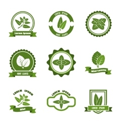 Mint leaves logos label emblems set vector