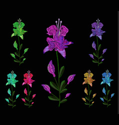 set of lilies different colors embroidery of jeans vector image