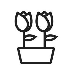 Tulips in pot vector