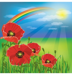 Nature background summer landscape with poppies vector image
