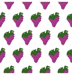 Seamless pattern with bunch of grapes vector