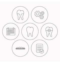 Dental crown braces and tooth icons vector