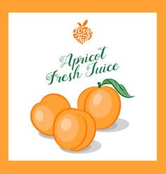 Apricot or peach juice sticker vector