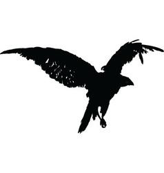 Falcon - vector