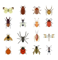 Insects icons flat set vector image vector image