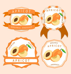 the yellow apricot vector image