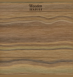 wooden realistic texture vector image vector image