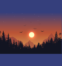 view to forest on sunset background vector image