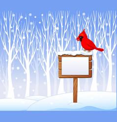 Cartoon cardinal bird on the blank sign vector