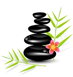 Hot Stone Massages and bamboo leaf vector image