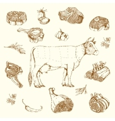 Meat Hand Drawn Elements Set vector image