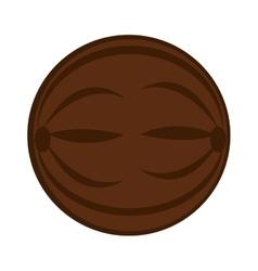 Coconut fresh fruit icon vector