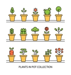 Flat icons set of pot plants garden vector image vector image