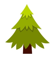 Spruce icon flat style vector