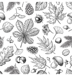 Autumn seamless pattern with leaves vector