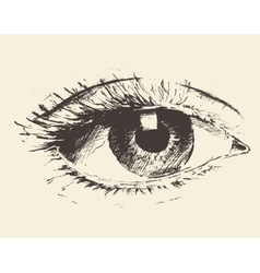Vintage of an eye hand drawn sketch vector