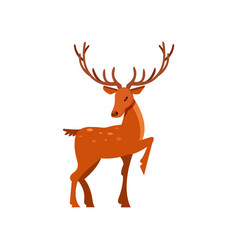 brown spotted forest deer with antlers wild vector image
