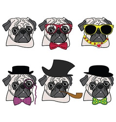 Pugs hipsters vector image
