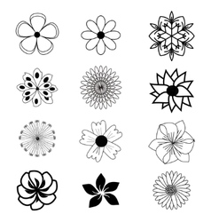 Set of flat flower icons vector image