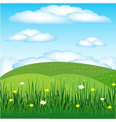 Year landscape with flower vector image