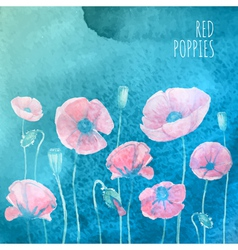 Waterolor red poppies on blue background vector