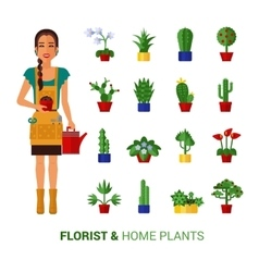 Florist and home plants flat icons vector