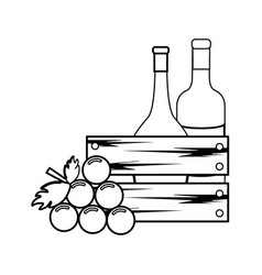 Line bottles wine and grape icon vector