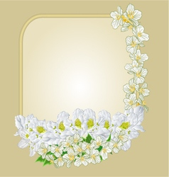 Frame with white rhododendron and jasmine vector image