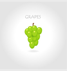 green grapes vector image vector image