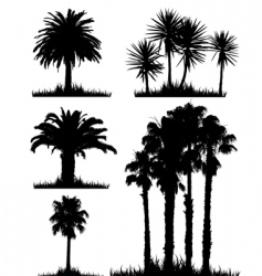 Tropical trees vector
