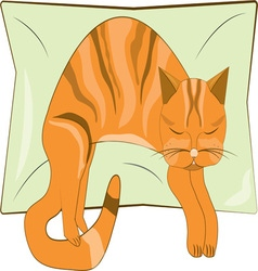 Napping kitty vector