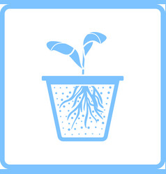 seedling icon vector image vector image