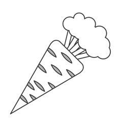 Whole carrot icon vector