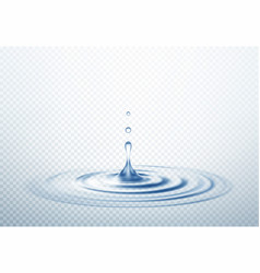 Realistic transparent drop and circle ripples vector