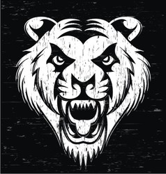 Grunge tiger head vector