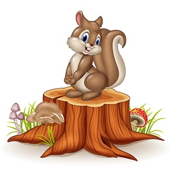 Cartoon funny squirrel on tree stump vector